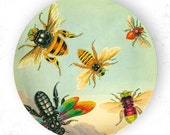 Bees, insects II melamine plate