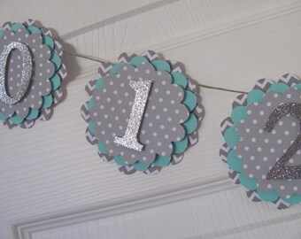 Photo Banner first year banner, 12 month banner, photo banner, Gray,  Turquoise, Glitter Silver