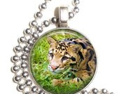 Clouded Leopard, Vera Kratochvil Photography Altered Art Pendant, Earrings and/or Keychain, Round Photo Silver and Resin Charm Jewelry
