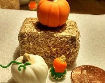 Haystack with pumpkin