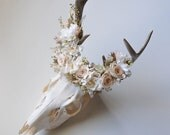 Deer Skull with Preserved Floral Crown - Blush and Cream