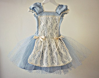 Vintage Style Alice In Wonderland Dress for Baby Girl Toddler Tutu with Lace Steampunk Victorian Costume