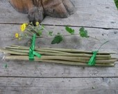 Hazel Wood Twig Bundle, Craft Supply, Magical Tool, Wicca,  Pagan, Ritual Wood, Natural tree branches