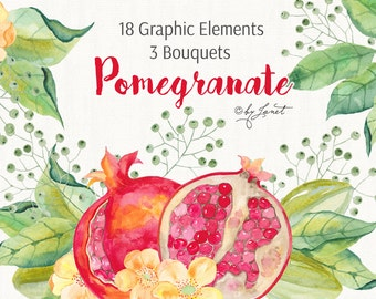 Pomegranate - and Fruit and Floral Watercolor Elements - PNG file - illustration