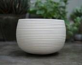 Ceramic Planter Succulent. White Stoneware Cactus Pottery Planter. Cactus Planter. Cactus Pot. Rustic Stoneware Planter. Succulent pot.