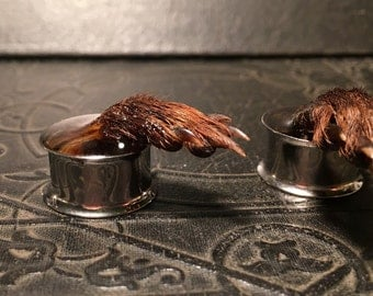 Grabby Hands REAL Preserved Mummified Mongoose Paws CLAWS Specimen PAIR Resin Taxidermy Double Flare Steel Tunnel Gauge Plugs 22mm