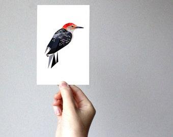 B78 - Red-bellied Woodpecker - Geometric bird art print