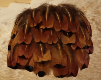 Pheasant Feathers, Bronze Flank Feathers, Ring Necked Pheasant, Fly Tying, Craft Feathers