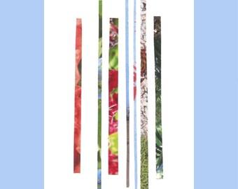 Botanical Lines. (A5 Print)