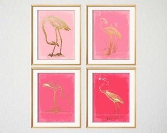 Flamingo Art Four 5x7 Prints Pink Flamingo Prints Cool