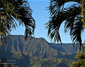 Palm trees and mountains - lush, green, kauai, hawaii, usa, blue sky, landscape, tropical, island, zen, fine art, original photography
