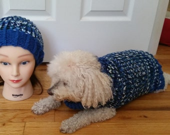 Guinea Pig Sweater/Roll Brim Hat Matching SET in Boho Sparkle