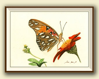 PRINT-Gulf fritillary Butterfly -   insect art drawing  print watercolor painting art wall insect Butterflies Art - Art Print by Juan Bosco