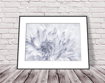 Black and White Flower Print, Dahlia Photograph, Black and White Flower Photography, Floral Wall Art Print, Romantic Art Bedroom Wall Decor