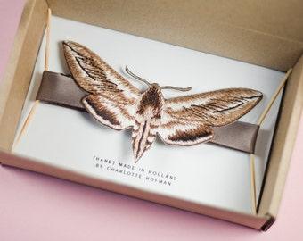 Butterfly Tie #2 / Moth