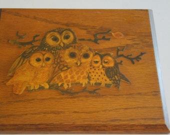 Wooden Vintage Owl Decoupage Plaque