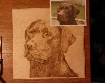 Hand drawn pyrography pet portraits
