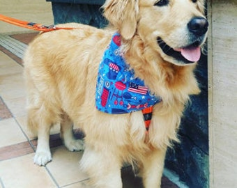Tie-on Dog Bandana in 4th of July Barbecue - Large/XLarge