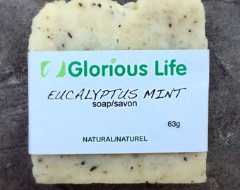 Natural Soap, EUCALYPTUS MINT Soap - 1 bar (2.2 oz./63g) - Vegan Soap, SLS Free Soap, Gluten Free Soap, Paraben Free Soap, Eco Friendly Soap