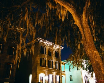 Houses and overhanging oak trees on Drayton Street at night in Savannah, Georgia. | Photo Print, Stretched Canvas, or Metal Print.