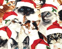 Christmas Cats Placemats, 4 Holiday Placemats, Cat Fabric Placemats, Handmade Fabric Placemats, Reversible Red and Santa Hats on Kittens