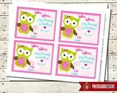 Valentine Tag | Owl Valentine Class Tag | Print file PDF | Digital | School | Tag | Class | Owl | Valentines Card | INSTANT DOWNLOAD