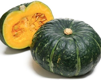Japanese pumpkin 12 seeds 10 seeds 5 seeds  kabocha squash  vegetables