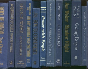 Books By The Foot, Lot of 10-12 hardcover books in shades of blue, navy blue, dark blue Instant Library, Staging, wedding, office, book lot