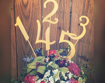 Table numbers, Centerpiece numbers, Wedding Table Numbers, Wedding Decorations, Numbers, Wedding