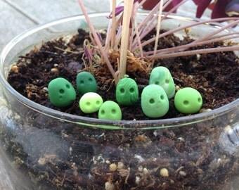 Green Terrarium Guardian Spirits