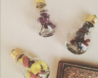 Flower Light Terrarium