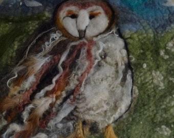 Ocean drum Owl