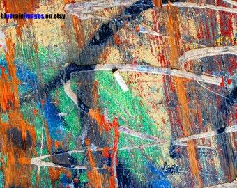 Graffiti Floor&Cigarette But, Street Art, Graffiti, Urban Art, Urban Decay, Abstract Photography