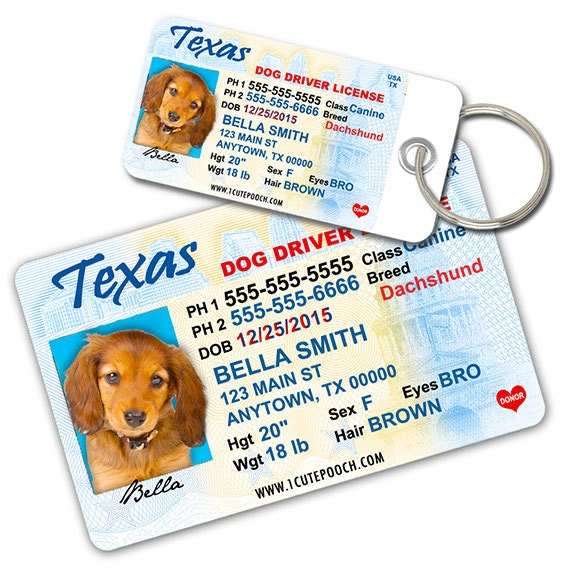 Texas Driver License Custom Pet ID Tags and Wallet Card Dog