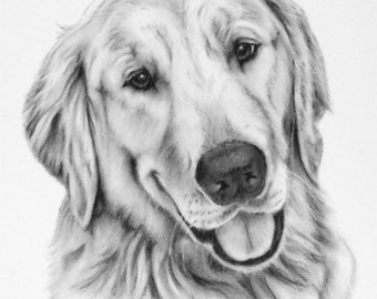 "Custom Pet Portrait, 8""x10"" Charcoal Drawing of your Dog, Cat or other Pet - Pet Art, Dog Art, Cat Art"