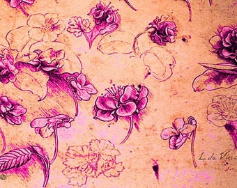 Da Vinci Flower Study Pink and Orange By Da Vinci - Giclee Print