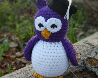 Graduation owl, graduation gift, personalized graduation gift, stuffed owl, owl stuffed animal