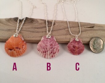 Natural sea shell necklace sterling chain free shipping