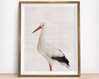 Wildlife Nursery Art Print | Stork Wall Art | Nursery Printable | Nursery Wall Art | Stork Art Print | Bird Art Print | Bird Wall Art |