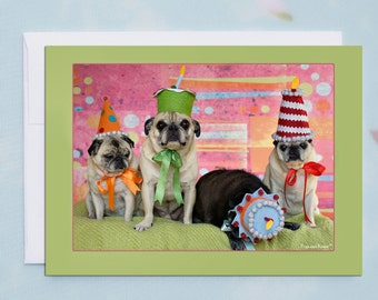 Funny Birthday Card - Pug Dog - Birthday Card - 5x7