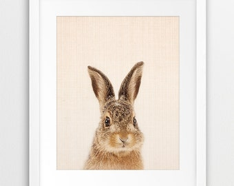 Rabbit Print, Woodland Nursery Art, Cute Bunny Wall Decor, Animal Printable Art, Nursery Wall Art, Baby Animal Print, Kids Room Decor, DIY