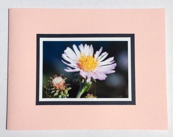 Handmade Blank Greeting Card - Aster Flower on Pink Card