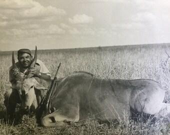 Vintage 8 x 10 original photograph Eland African safari hunt