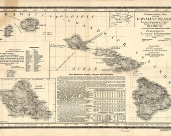 Hawaii map print old maps Antique map poster map wall home decor wall map vintage Hawaii print state map art large map art print 24x36