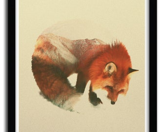 Affiche snow fox par Andreas Lie