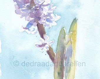 Hyacinth. Original watercolour.