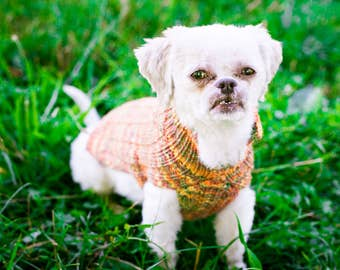 Handknit Cat & Dog Sweater Beaded Rib Pattern in Superwash Merino, Colorway Glenwood - size XSmall - READY TO SHIP