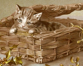 Vintage cat kitten in wicker basket trade card digital download printable instant image