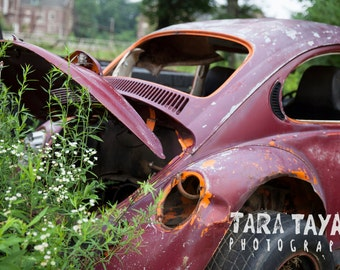 Vintage Red Volkswagen Bug Car Photography Print, Rustic Home Decor, Color Photography, Overgrown Nature Print, Classic Car