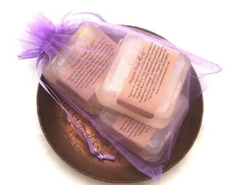 Guest Soap, Soap Gift, Teacher Gift, Hostess Gift, VEGAN Soap, Vegan Gift, Holiday Soaps, Gift Soaps, Organza Bag, Gift under 15, Gift Set